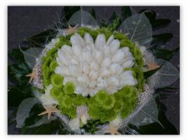 kód: zf033 fehér tulipánok